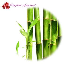 Bambú Concentrado