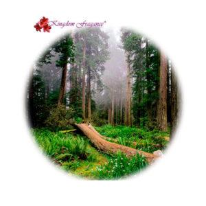 Bosques Clean